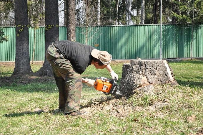 При умелом подходе, корчевание пней вручную – достаточно эффективный метод, так как можно удалить из почвы не только пень, но и абсолютный максимум корневой системы